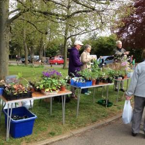 Cottenham Gardeners' Club