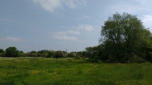 Worts Meadow Landbeach